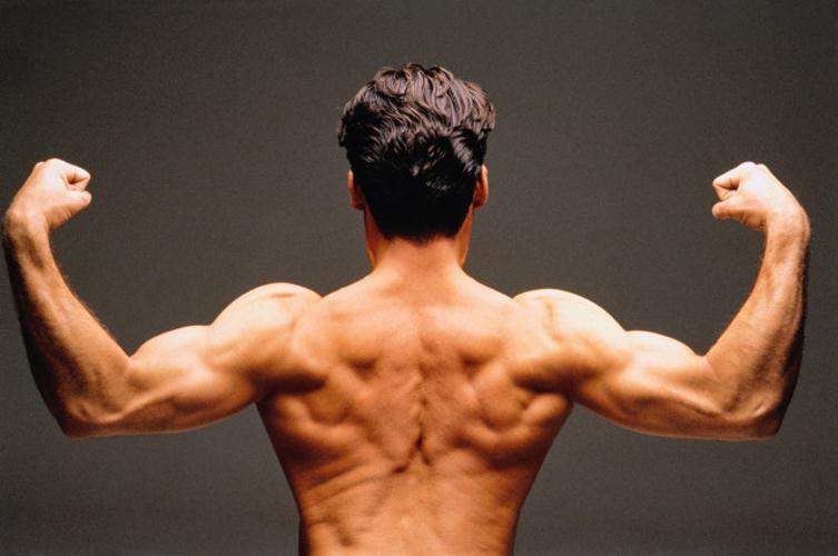 Как накачать мышцы в домашних условиях?
