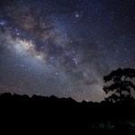 Звездное небо в августе