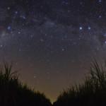 Звездное небо вид с луга